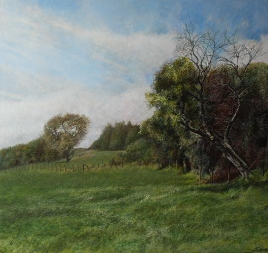 Portraits d'arbres -Paysage Allemand-